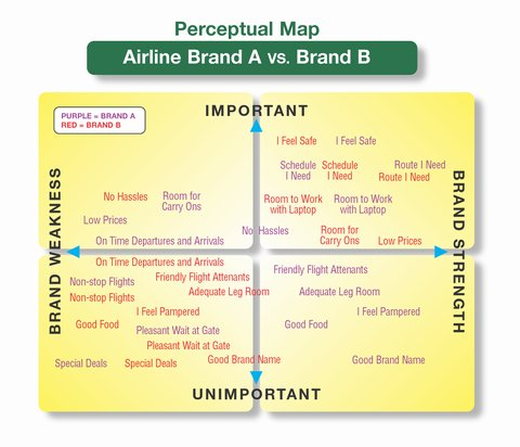 480_Perceptual Map